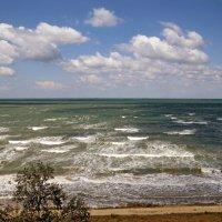 Полосатое море :: Вера Щукина