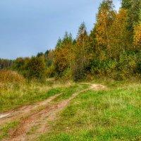 Осенняя картинка :: Милешкин Владимир Алексеевич