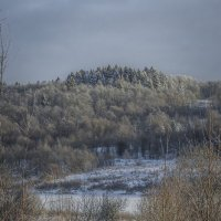 Зима в Вологодской области :: Дмитрий Царапкин