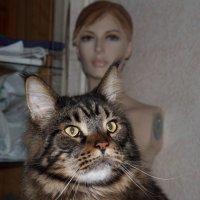 Romka2 :: Александр Rehc