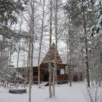 Здесь холод поселился до Весны... :: Регина Пупач