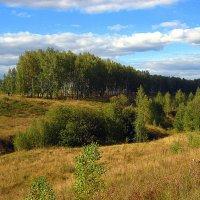 В сентябре. :: оля san-alondra
