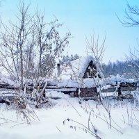 У леса на опушке живет зима в избушке :: Нина