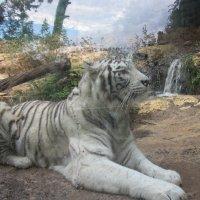 Бенгальский тигр :: Герович Лилия