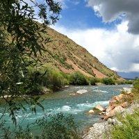 Река Западный Каракол в Киргизии :: GalLinna Ерошенко