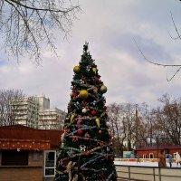 скоро-скоро Новый год :: Александр Корчемный
