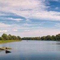 Один рыбак и 27 птиц. :: Андрий Майковский