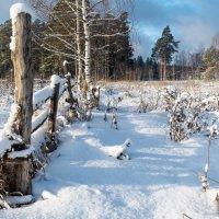Зимний пейзаж :: Андрей Иванов