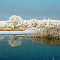 Зимняя река. :: Евгений Кузнецов