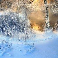 Снежный закат... :: Андрей Войцехов