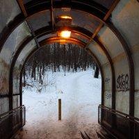 Мой светлый путь :: Андрей Лукьянов