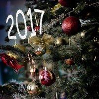 С Новым 2017 Годом! :: Мария Климова