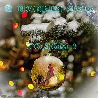 С наступающим Новым годом! :: Сергей Басов