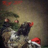 Новогоднее поздравление :: Ирина Приходько
