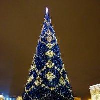 Главная елочка Санкт-Петербурга... :: Sergey Gordoff