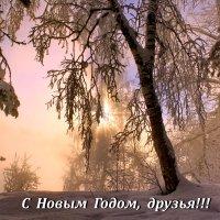 Пусть Новый год в ваш дом войдёт... :: Галина