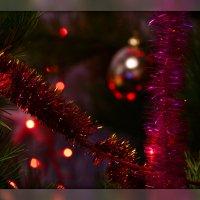 Новогодние игрушки, свечи и хлопушки в нём, А весёлые зверюшки мой перевернули дом :: Татьяна Евдокимова