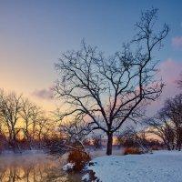 Зимний парк :: Ирина Лядова