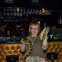 Две змеи встретились)))) :: Алексей Цветков