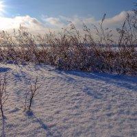 Зимним днём... :: Rafael