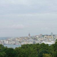 Вид на Стамбул из дворца Топкапы :: Ольга Васильева