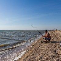 Ловись рыбка, большая и маленькая! :: Алексей Лейба