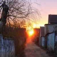 Кому солнце на дорожку? :: Елена Гриненко