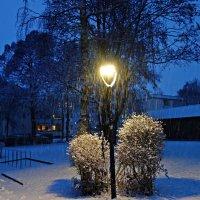 Первый снег... :: Galina Dzubina