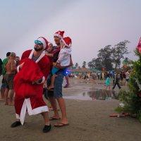 Новый год шагает по планете :: Elen Dol