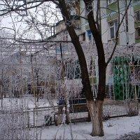 У моего подъезда :: Нина Корешкова