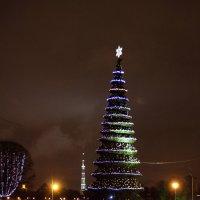 Праздничная ёлка :: Aнна Зарубина
