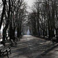 первый день Нового года :: Александр Корчемный