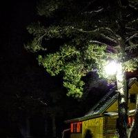 Сказочная новогодняя ночь, рядом можно встретить приведение :: Юрий Глушков