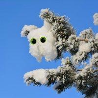 снежные фантазии :: linnud