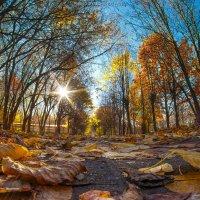 Осень :: Павел Ученов
