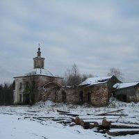 По первому снегу :: Алексей Хохлов