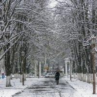Зима началась в ноябре :: Игорь Сикорский