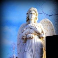 У каждого должен быть свой ангел-хранитель.. :: Андрей Заломленков