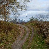 В последние дни ноября еще катаемся на велосипедах (окрестности Торонто) :: Юрий Поляков