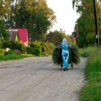 Есть женщины в русских селениях ..... :: Святец Вячеслав