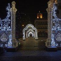 Царские ворота :: Владимир
