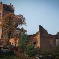 Руины замка Гердауэн (Железнодорожный (Калининградская область))... :: Евгения Кирильченко