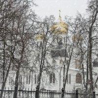 Просто шёл снег. :: Анатолий. Chesnavik.