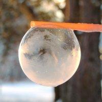 Мыльные пузырт :: Ольга Тумбаева