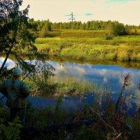 У сказочной Мологи реки... :: Sergey Gordoff