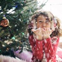 Новогоднее чудо :: Anna Shevtsova