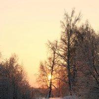 Утро :: Дмитрий Арсеньев