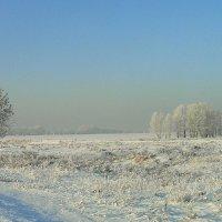 И опять-зима,зима,зима... :: nadyasilyuk Вознюк