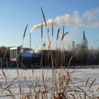 Ни дня без дыма :: Валерий Чепкасов