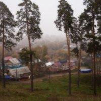 Туманный денек. :: Svetlana